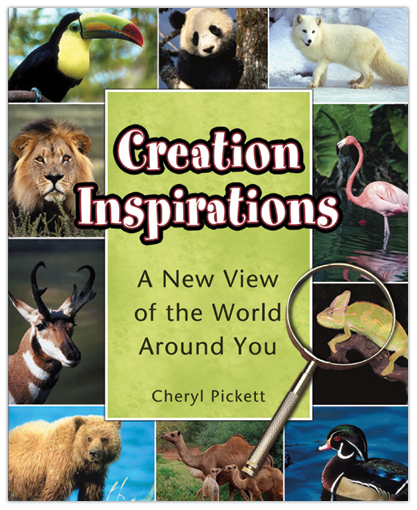 Creation Inspirations: A New View of the World Around You